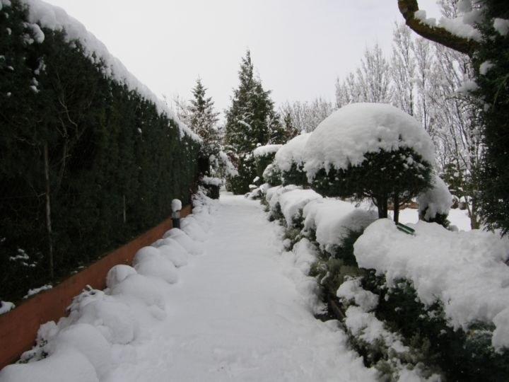 Zona 6 nieve_resultado