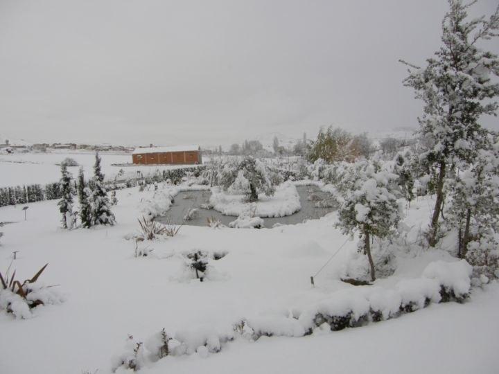 Zona 8 nieve_resultado