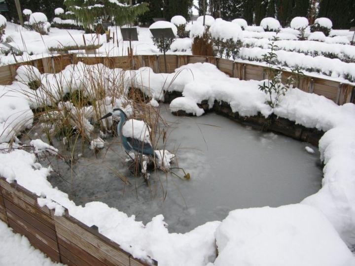 Zona II nieve-2_resultado